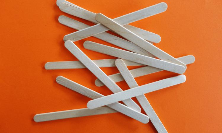 Are Popsicle Sticks Safe for Rabbits?