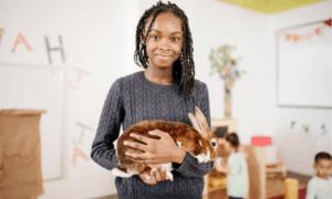 Are Rabbits Good Classroom Pets?