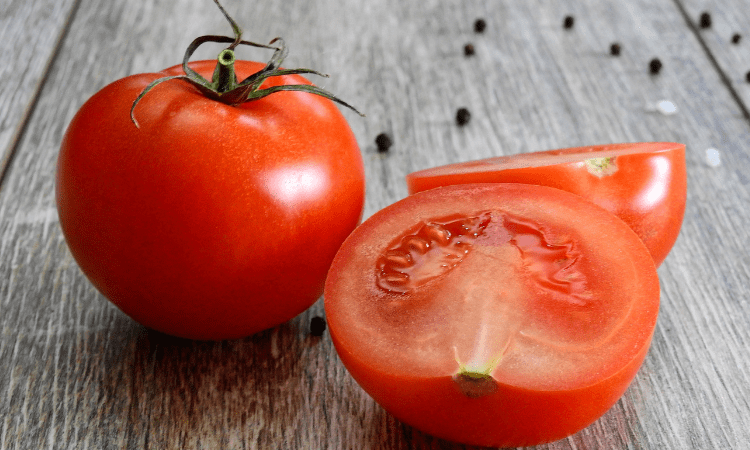 Can Rabbits Eat Tomatoes? (Hint: Yes, But Not Daily)