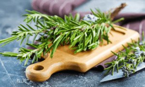 Can Rabbits Eat Rosemary? Is it Toxic for Rabbits?